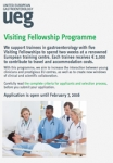 UEG Visiting Fellowship Programme